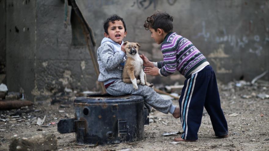 OPINIÓN: Campaña de Facebook, Google y Hollywood contra Gaza - palestina