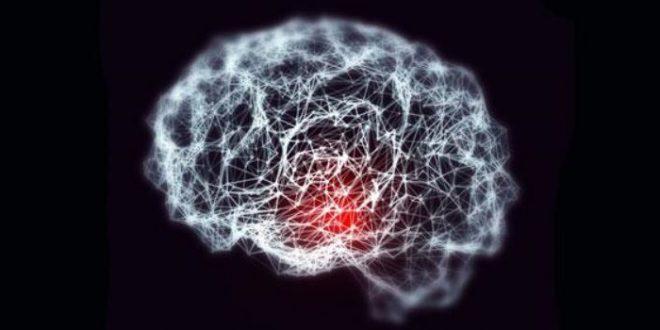 Restablecen la memoria en ratones con alzhéimer - alzheimer.cambridge-660x330