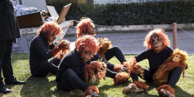 Ecologistas piden a la Unión Europea excluir al biodiésel de palma por destrucción de biodiversidad - th_1cce678baa2865fe866ba90e481edd63_BiodiéselFoto5