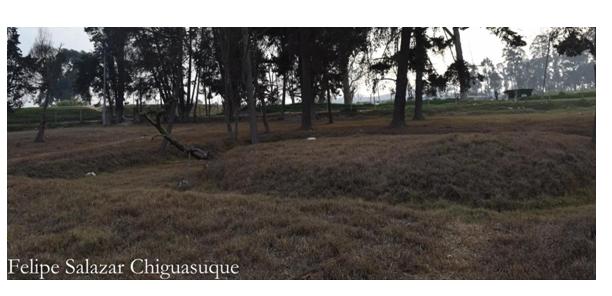 DEFENSA DE TERRITORIO ancestral Mhuysqa de Bosa por el Parque Metropolitano de la Planta de Tratamiento del río Tunjuelo - Sin-título-1