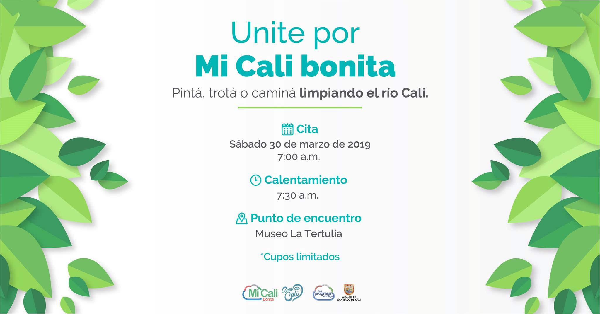 Amo Mi Cali,Ciudad Limpia - 5-4