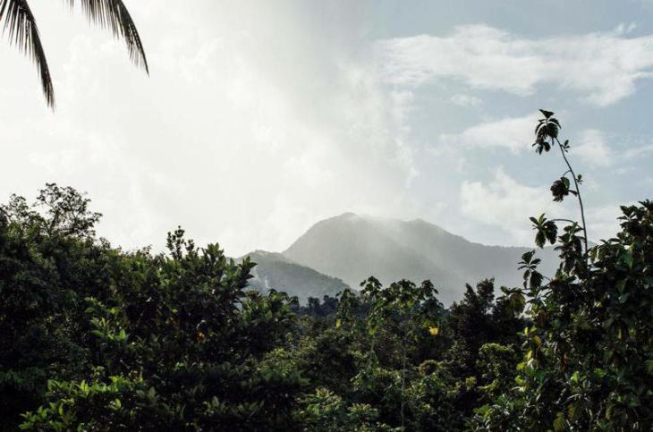 Amenazas de retaliación a Emberas de Resguardo Humanitario y Ambiental y Nuevo Cañaveral - 590703_1-1
