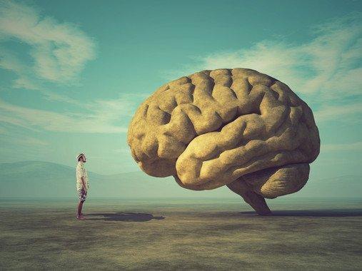 La irreversibilidad de la muerte cerebral, cuestionada - La-irreversibilidad-de-la-muerte-cerebral-cuestionada_image_380