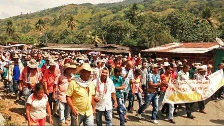 En el Bajo Cauca antioqueño exigen se implemente plan de sustitución de cultivos - movilizacio_nenpuertovaldivia_1_