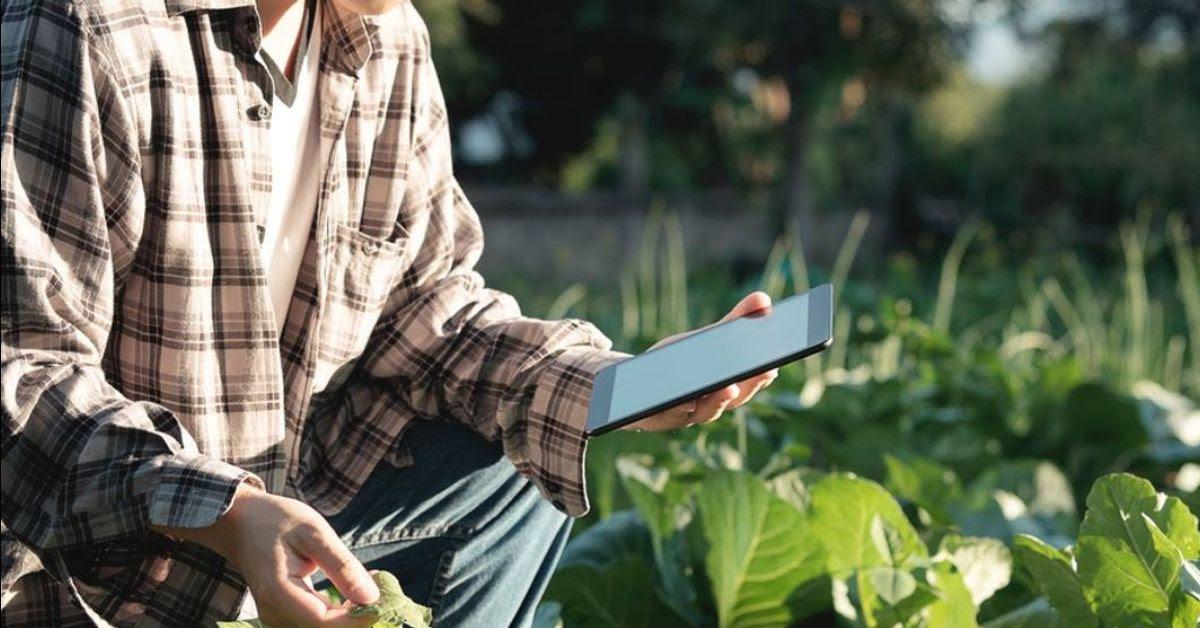 Expo Agrofuturo 2019, una gran apuesta por el sector agro en Colombia - 507