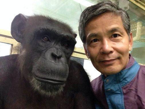 """""""Humanos y chimpancés somos casi la misma criatura"""" - Humanos-y-chimpances-somos-casi-la-misma-criatura_image_380"""