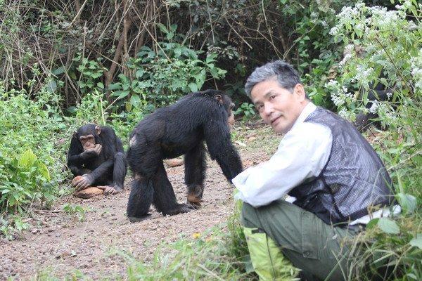"""""""Humanos y chimpancés somos casi la misma criatura"""" - photo-2011-12-23-Bossou-126_imagelarge"""