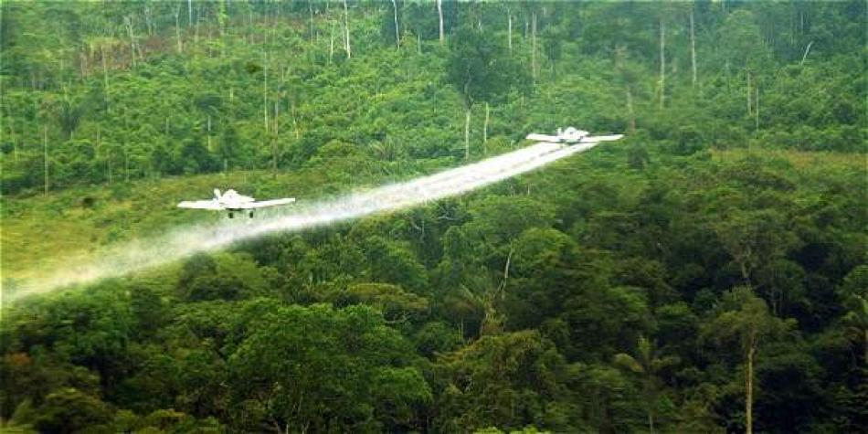 Presidente, reanudar aspersiones aéreas hace inviable su compromiso en materia ambiental y social - 58a09561d2e4dglifosato