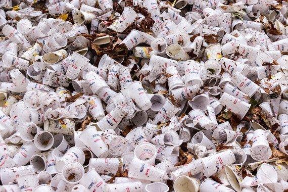 Los plásticos biodegradables también son tóxicos - Los-plasticos-biodegradables-tambien-son-toxicos_image_380