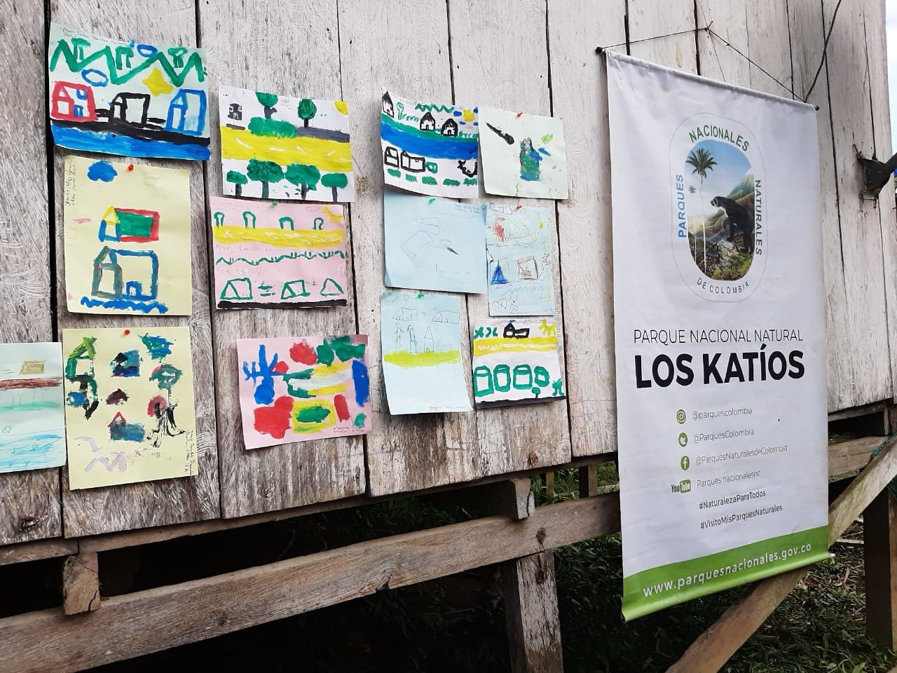 En Chocó se realizó homenaje a los pescadores de Puente América y Riosucio por buen manejo de las prácticas pesqueras - Dibujos-de-los-niños