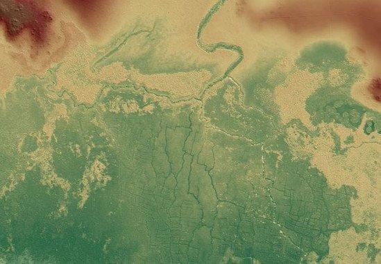 Imagen del antiguo sistema de campo de humedales mayas de Birds of Paradise y partes de otros cercanos como Gran Cacao (izquierda) y Akab Muclil (derecha) al noroeste de Belice. / T. Beach et al. (University of Texas at Austin, Austin, Texas)