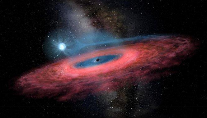 Un agujero negro que desafía los modelos de evolución estelar - Un-agujero-negro-que-desafia-los-modelos-de-evolucion-estelar_image_380
