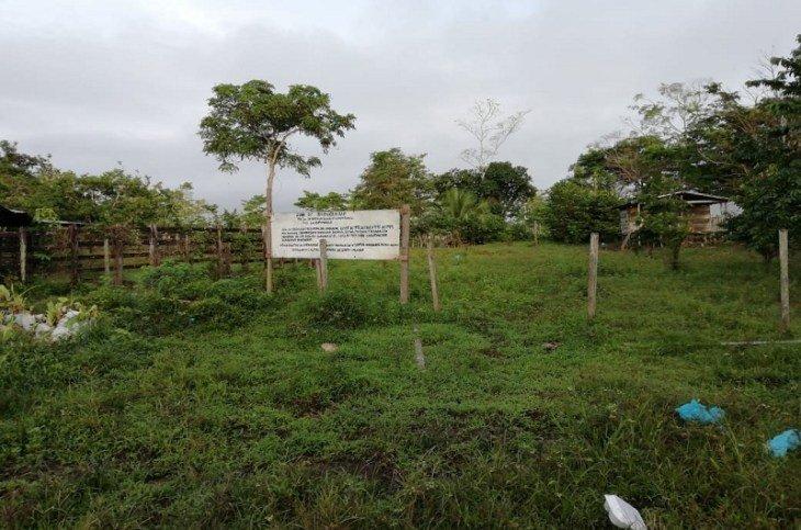 Continúa el despojo en la Zona de Biodiversidad La Esperanza - Zona-de-Biodiversidad-la-Esperanza