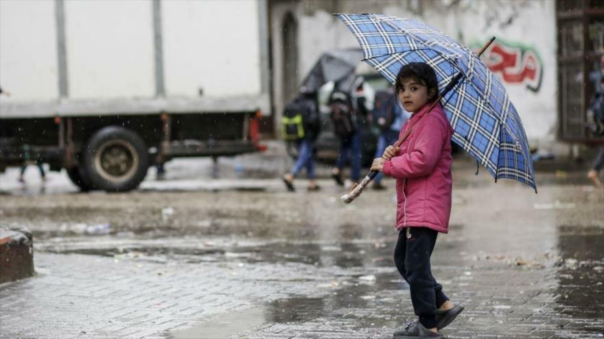 Informe: La peor pesadilla empieza en Gaza cuando…. ¡llueve! - 08525577_xl