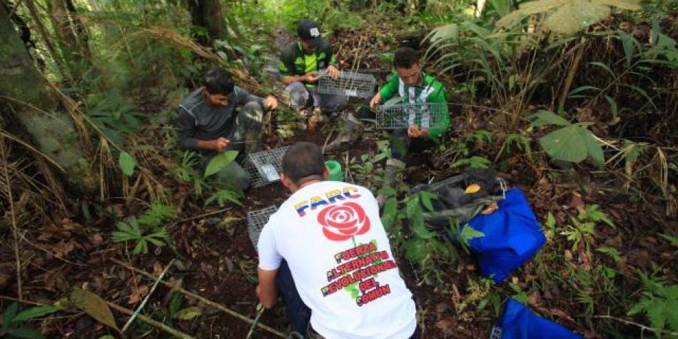 Los asesinatos de exFarc en Valle y Cauca tienen preocupados a miembros del movimiento político. Foto: EL TIEMPO