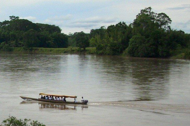 Putumayo: Asesinatos y desplazamientos forzados en Santa Lucía, Puerto Guzmán - putumayo