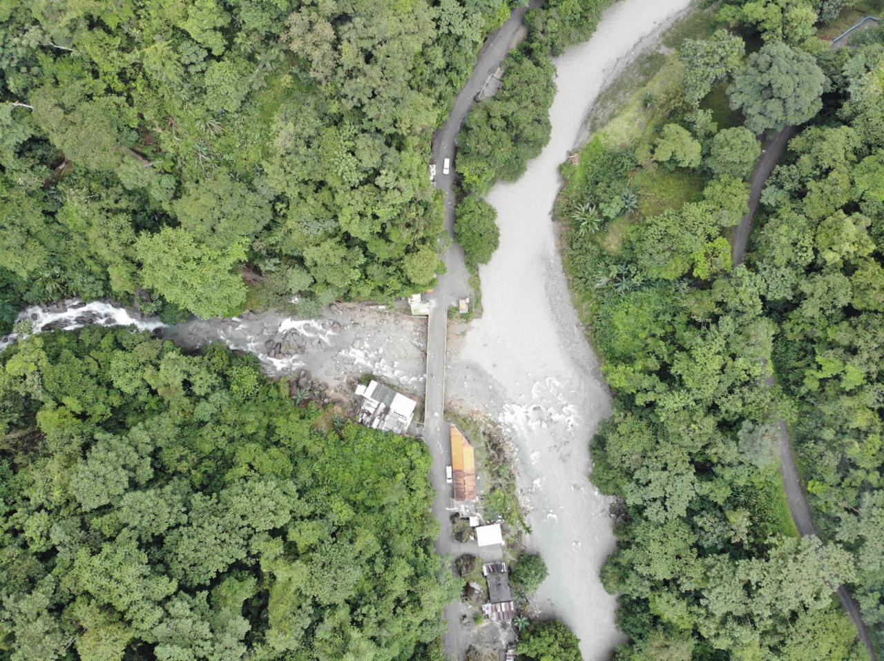 En el Valle del Cauca se unen esfuerzos para prevenir la extinción de la Pava Caucana - FARALLONES-DE-CALI