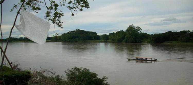 Campesinos del Putumayo declaran alerta humanitaria por erradicación violenta - Putumayo-Zona-de-Reserva-Campesina-Perla-Amazónica-1