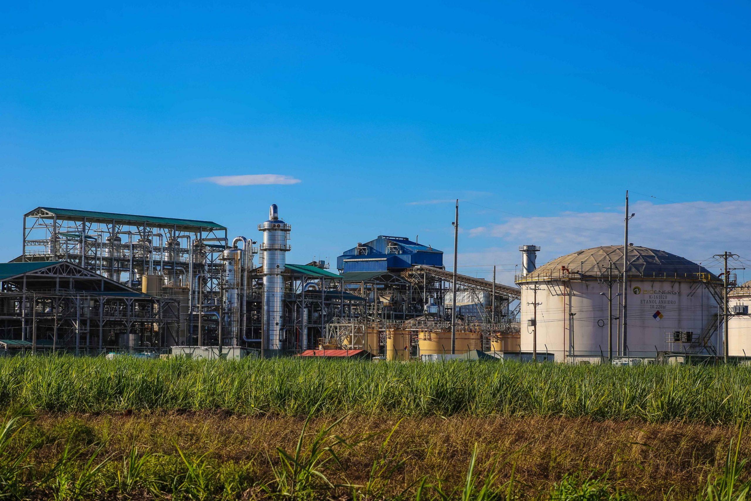 La liquidación de Bioenergy es reconocer el fracaso de Ecopetrol - 5bf850e1bf0bd-scaled