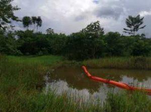 Misión de verificación evidencia afectaciones ambientales por Amerisur en Zona de Reserva Campesina Perla Amazónica - WhatsApp-Image-2020-07-07-at-3.44.55-PM-1-300x224