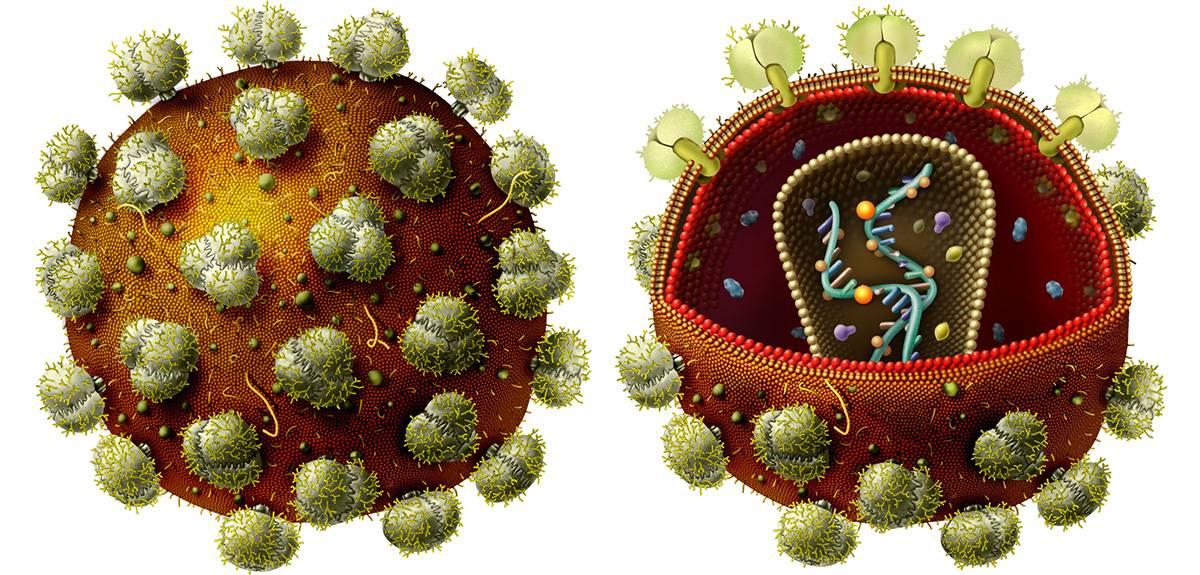 Cómics y videojuegos para comprender el mundo de los virus - virus
