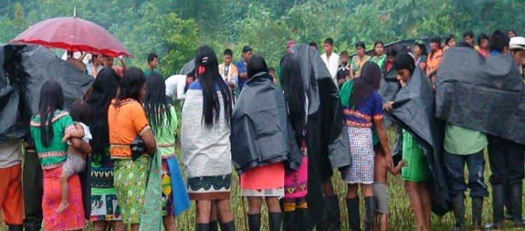 Indígenas Embera se movilizan contra cultivos ilícitos en su territorio - Alto-Guayabal-45-copia