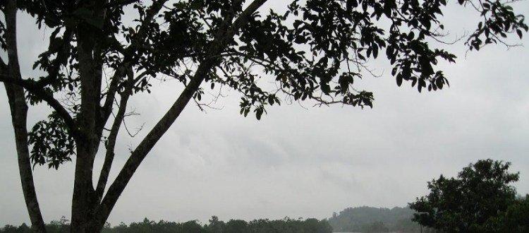 Paramilitares de las AGC asesinan a joven, hijo de líder social de Llano Rico - rio