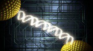 Representación gráfica de la conducción eléctrica a través de moléculas de ADN. / Nature Nanotechnology