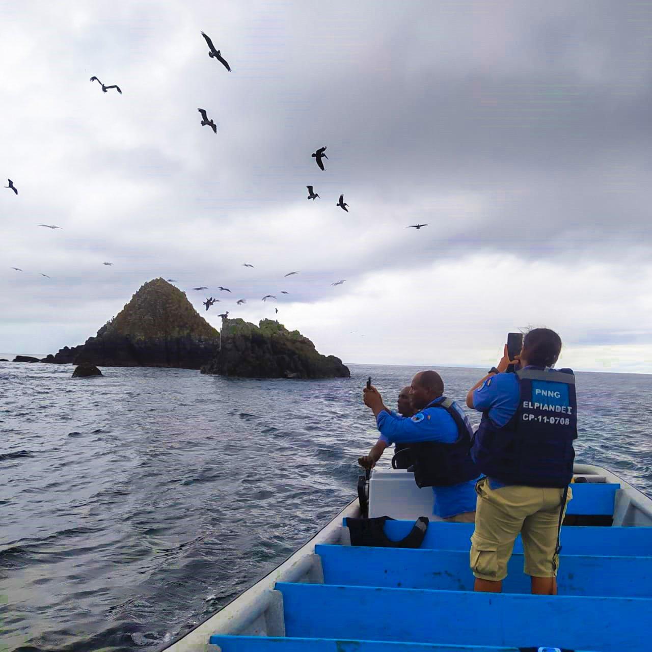 El Parque Nacional Natural Gorgona cuenta con la mayor línea de tiempo continua de información de aves marinas en Colombia - PNN-GORGONA-1