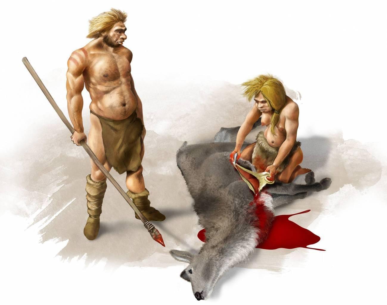 Los pulgares de los neandertales se adaptaron para sujetar herramientas con mango - Los-pulgares-de-los-neandertales-se-adaptaron-para-sujetar-herramientas-con-mango
