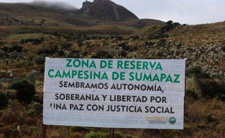 Falla tutela a favor de constitución de zonas de reserva campesina - suma