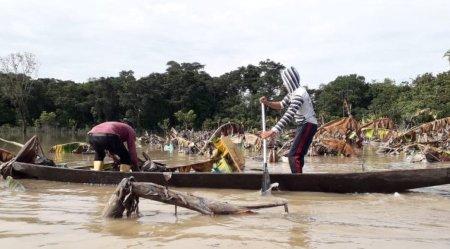 Campesinos y deforestación en el norte Amazónico - guavi