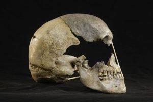 El-sexo-entre-los-primeros-sapiens-europeos-y-los-neandertales-fue-mas-comun-de-lo-que-se-creia - El-sexo-entre-los-primeros-sapiens-europeos-y-los-neandertales-fue-mas-comun-de-lo-que-se-creia-300x200