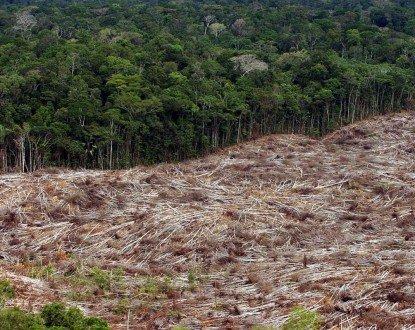 """Activistas protestan frente al Consejo Europeo por el """"ecocidio"""" del Amazonas - deforestacion-selva-amazonas-brasil-415x330-1"""