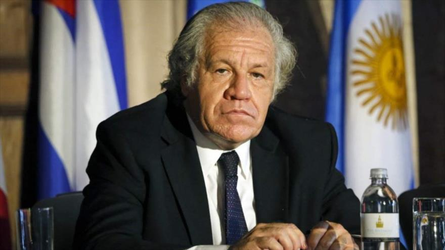 México censura políticas injerencistas de OEA y pide su disolución - 01562227_xl