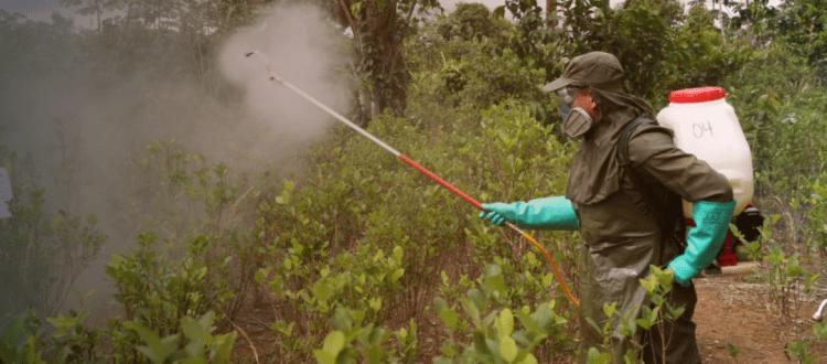 Policía Antinarcóticos continúa desconociendo derechos de Cabildo Nasa en Puerto Asís - aspercion-terrestre