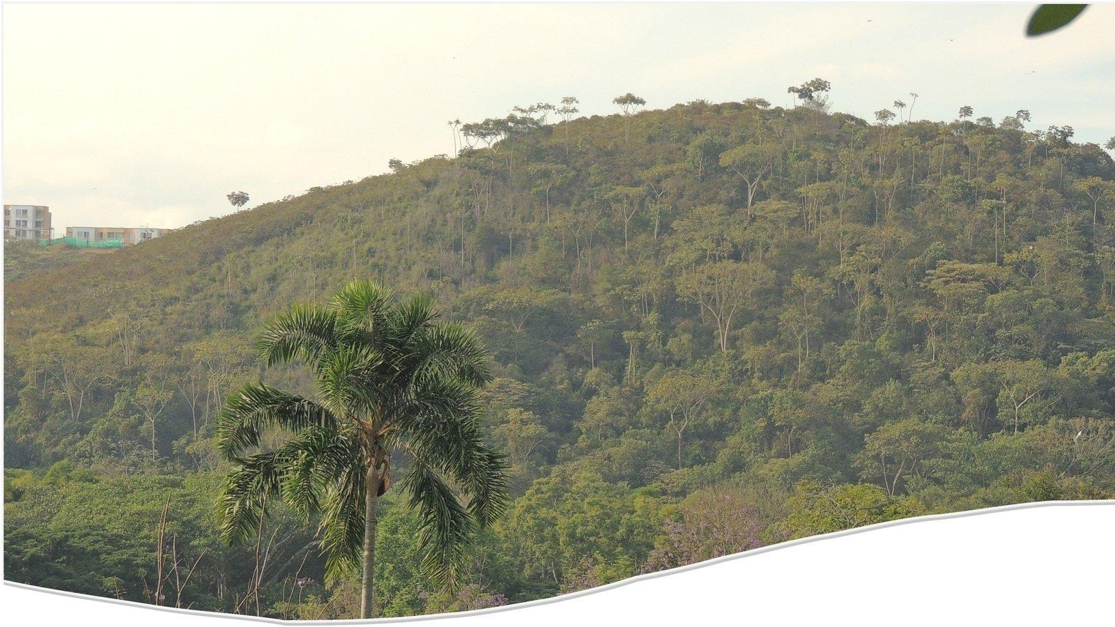 Que viva el Cerro El Morro - VYnoVOCluwEewgX-1600x900-noPad