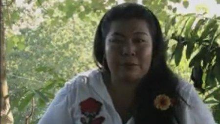 Puerto Parra, Magdalena Medio santandereano Autoridades indígenas rechazan declaraciones frente a desaparición de gobernadora - goberna_